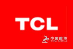 TCL新技术(惠州)有限公司